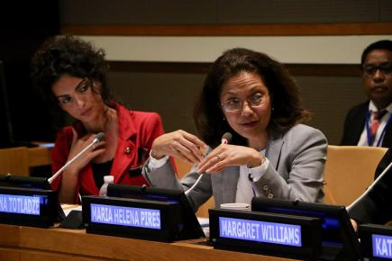 Inclusion in Process & Policy: Civil Society Participation & Partnership in Advancing SDG 16+